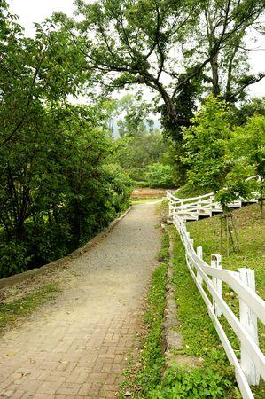 un chemin de randonn�e dans le parc  Banque d'images
