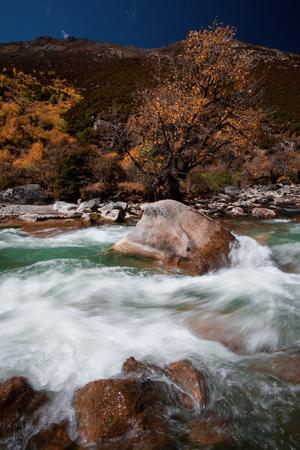 Daocheng scenery of a running stream