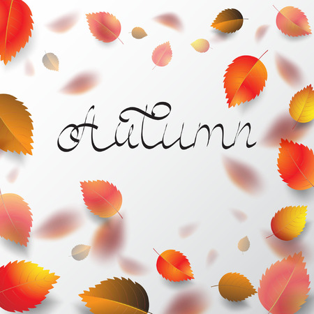 Autumn leaves. Vector stock.