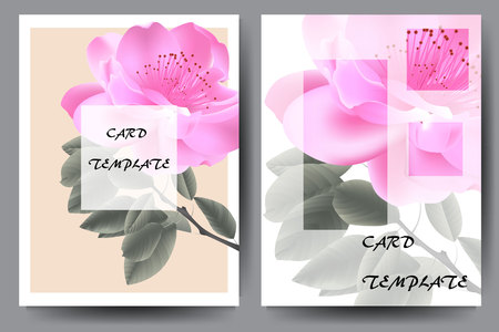 Template brochure with floral rose design. Vector stock.