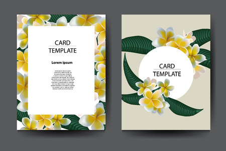 Template brochure with plumeria flower design. Vector stock. Stockfoto - 118576900