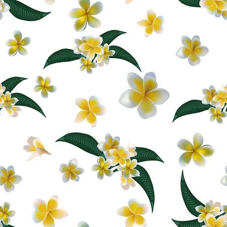 Plumeria pattern seamless. Vector stock. Stock Illustratie