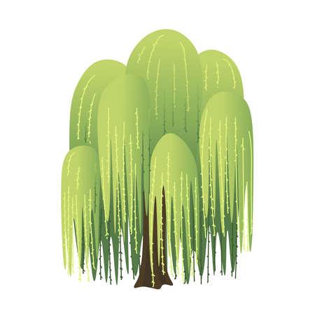 Willow cartoon tree. Vector illustration