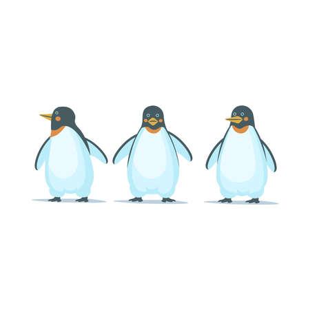 Emperor penguins on white background. Vector cartoon illustration.