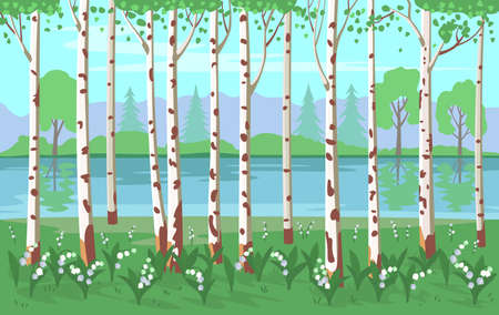 Birch grove with lilies of the valley and a river. Vector background