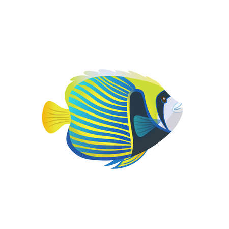 Cartoon an emperor angelfish on a white background. Vector illustration.