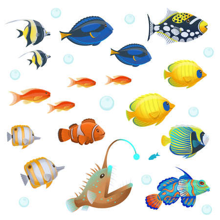 Tropical fish set. Vector illustration in cartoon style. 矢量图像