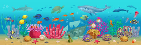 Big marine set of coral reef with algae tropical fish, a whale, an octopus, a turtle, jellyfish, a shark, an angler fish, a seahorse, a squid and corals. Vector illustration in cartoon style.