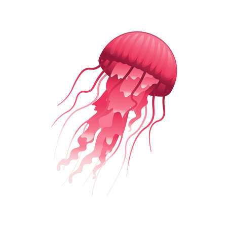 Cartoon a jellyfish on a white background. Vector illustration.