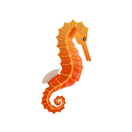 Cartoon a seahorse on a white background. Vector illustration