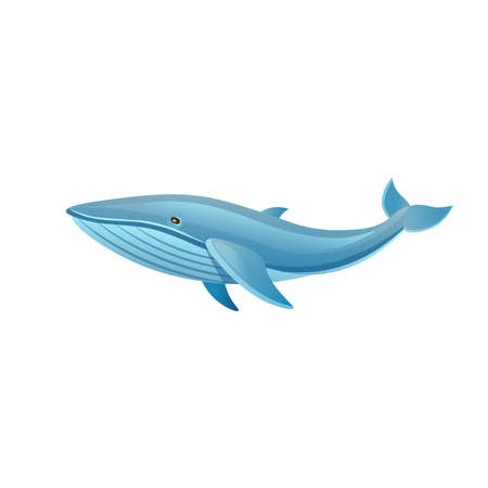 Cartoon whale on a white background. Vector illustration 矢量图像