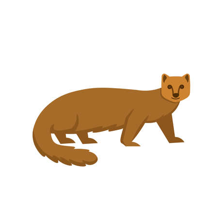 Cartoon mongoose on a white background.Flat cartoon illustration for kids. Ilustración de vector