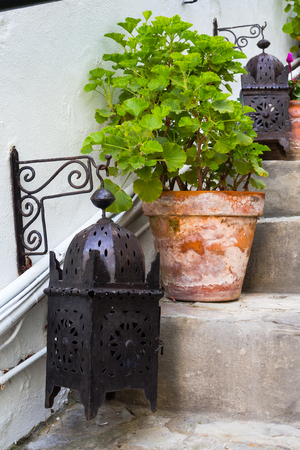 garden lamp: Arabic garden lamp and plant on a ladder Stock Photo