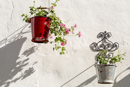 geranium color: Geraniums hanging in metal pots with white wall background