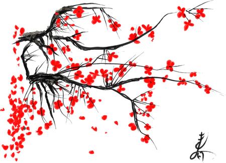 cereza: Realista flor de sakura - cerezo japon�s aislado en el fondo blanco. Ilustraci�n del vector.
