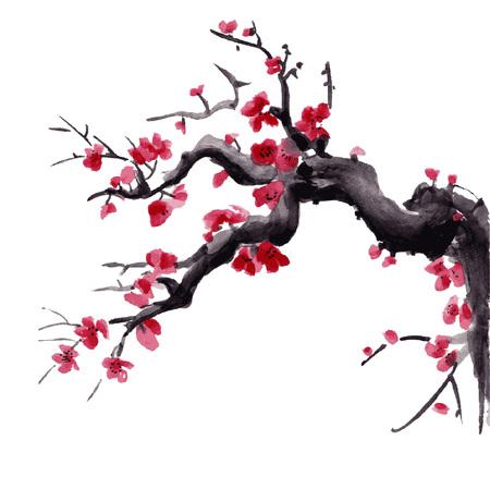 Realistische sakurabloesem - Japanse kersenboom die op roze achtergrond wordt geïsoleerd. Vector illustratie.