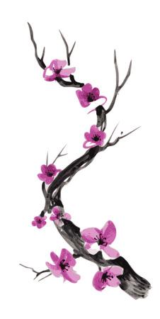 Realistic sakura blossom - Japanese cherry tree isolated on pink background. Vector illustration.