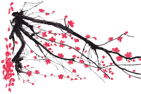 Realistic sakura blossom - Japanese cherry tree isolated on pink background. Vector illustration.