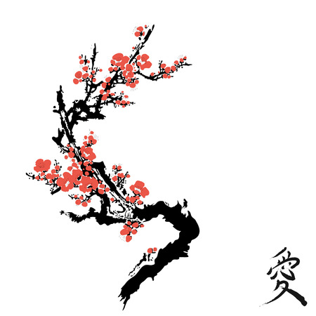 Realistic sakura blossom - Japanese cherry tree isolated on white background. Cherry Blossom.
