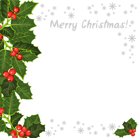 The holly tree, branches. Happy Christmas background