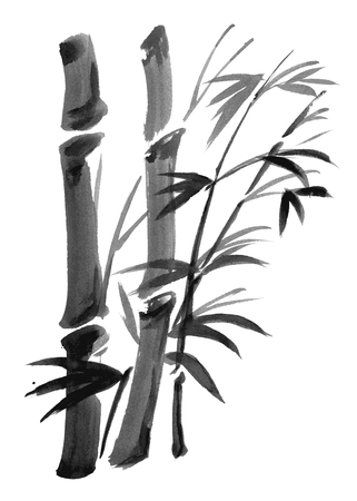 Bamboo branches isolated on the white background. Vector watercolor painting.