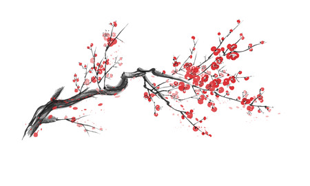 Realistyczny kwiat sakura - wiśnia japońska na białym tle. Ilustracje wektorowe