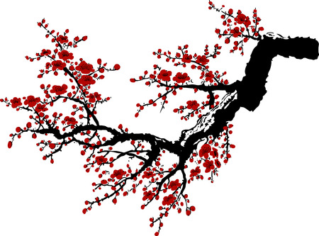 Realistic sakura blossom - Japanese cherry tree isolated on white background.