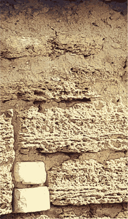 Texture from old coquina limestone brown wall Illustration