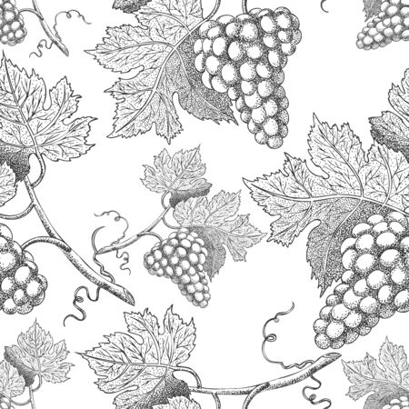 Seamless vector pattern with grapes. Black and white engraving style drawing - Vector illustration