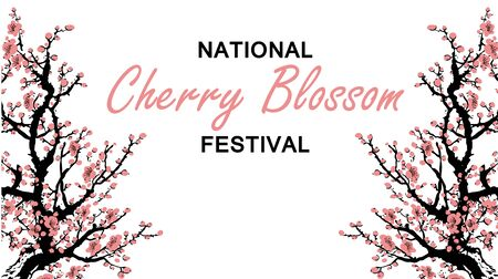 Cherry blossom event template with hand drawn branch with pink cherry flowers blooming. Sakura blossoming festival banner. Chinese or Japanese traditional drawing - Vector illustration Zdjęcie Seryjne - 135226282