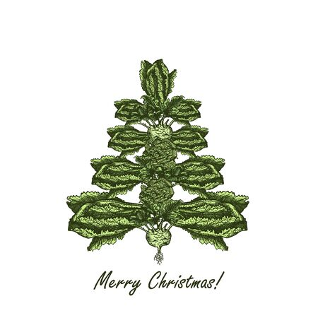 Abstract Christmas tree made of cabbage. Vegetarian Christmas tree. Hand drawn illustration - vector illustration