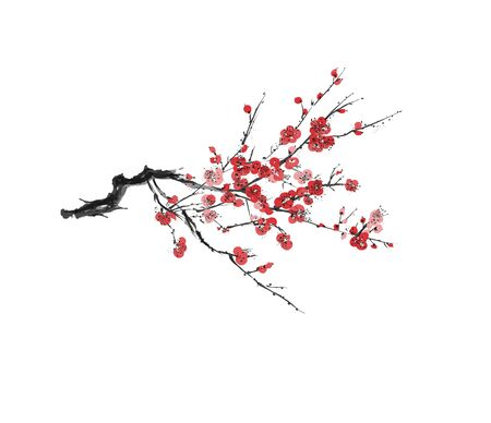 Realistic sakura blossom - Japanese cherry tree isolated on white background - Vector illustration