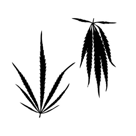 Cannabis silhouette plant isolated on white background. Realistic silhouette marijuana leaf.