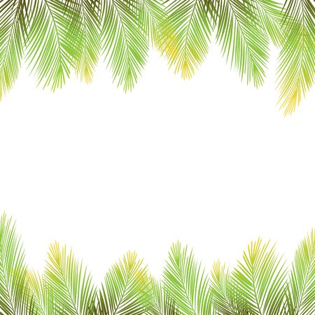 Border of palms branches on isolated on white background. Realistic tree palms. Vector illustration Ilustrace