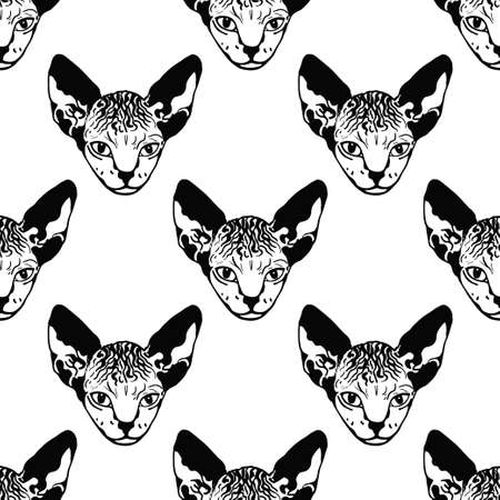 Sphinx kittens. The cat is spotty. Striped. Black and white sketch. graphics. Prints for clothes, T-shirts. Vector illustration Ilustração