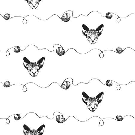 Sphinx kittens. The head cat is spotty. Black and white sketch. graphics. Prints for clothes, T-shirts. Vector illustration Illustration