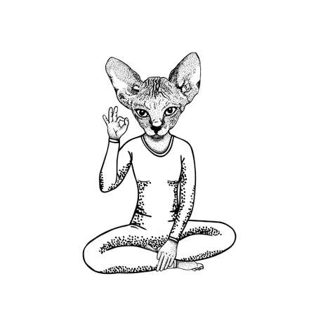 Catwoman showing symbol okay in pose lotus, hand drawn vector illustration