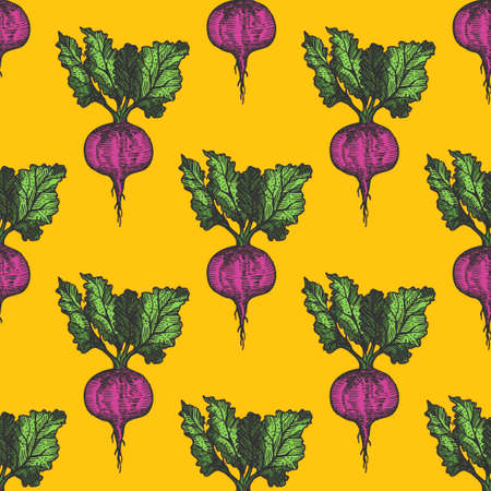 Table beet seamless pattern hand drawn background on yellow. Vintage background. Vector Vektoros illusztráció