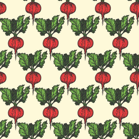 Table beet seamless pattern hand drawn background. Vintage background. Vector