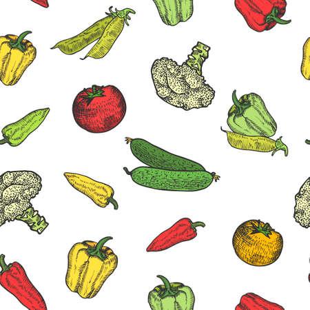 Vegetables set hand drawn background seamless pattern. Vintage background. Vector