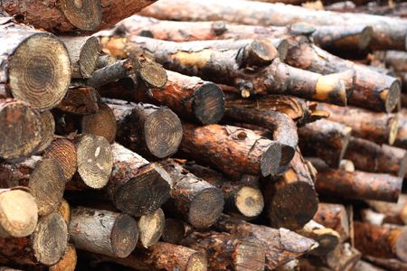 woods for fireplace Stock Photo - 4804785