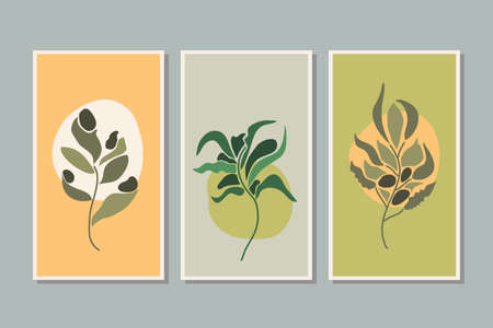 Botanical,foliage,plant,leaf wall art vector set. Foliage line art drawing with abstract shape. Abstract Plant Art design for print, cover, wallpaper, background, Minimal and natural wallpaper. Vector illustration