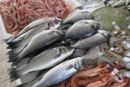 Seabass and dorado from Adriatic sea at the fish market in Bar-city, Montenegro. Stock Photo