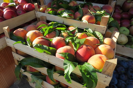 Fresh peaches at the food market in Bar-city, Montenegro