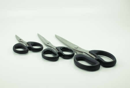 The Scissors Family gathered into the formation