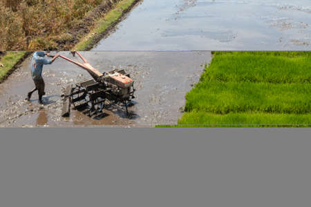 Farmers are plowing the fields to be planted Stock Photo