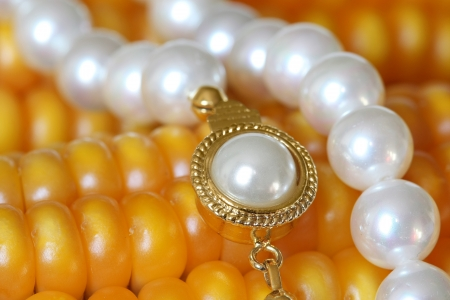 jewelle: Jewelry and Food Series  Pearl Necklace On Maize Corn  Stock Photo