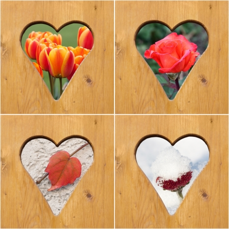 Flowers of four season in the heart-shaped door holes photo