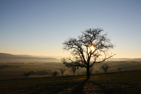 Rural landscape in the early evening sunset in winter