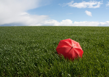 Red umbrella on the green meadow Stock Photo